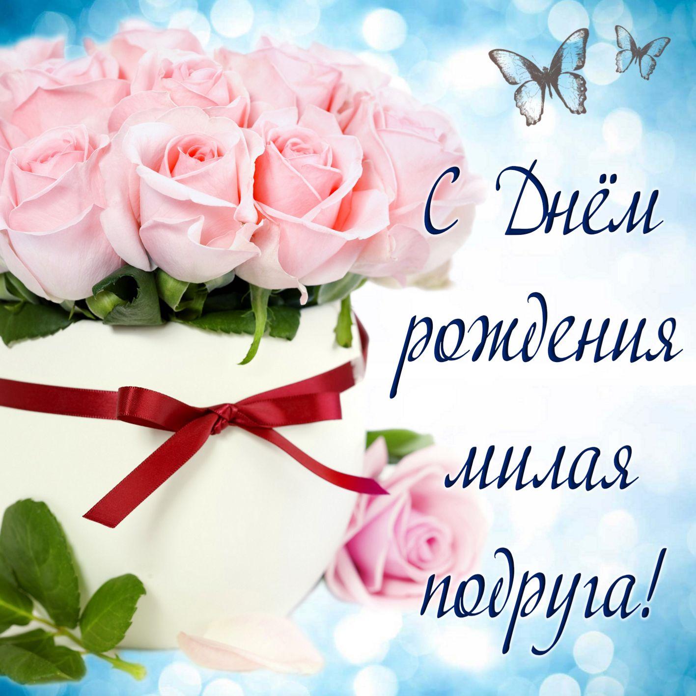 Цветы на букву о названия и фото