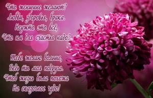 Красивый розовый цветок и пожелание