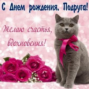 Красивый серый котик подруге на День рождения