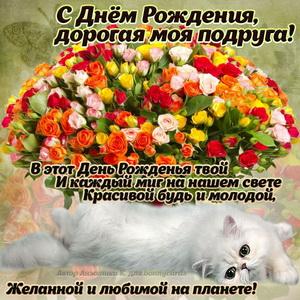 Картинка для подруги с котиком и букетом цветов