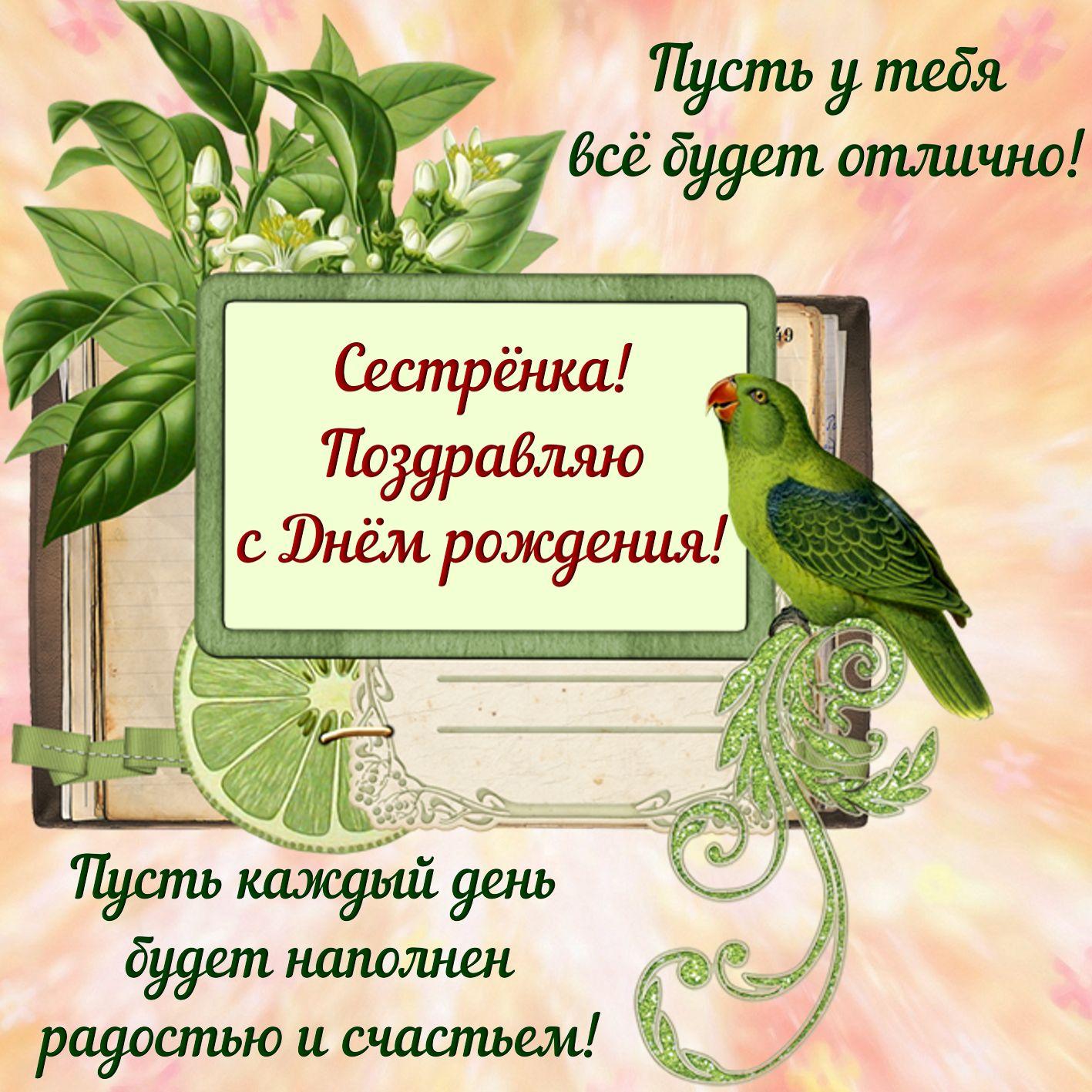 Красивая картинка с попугаем и пожеланием сестре на День рождения