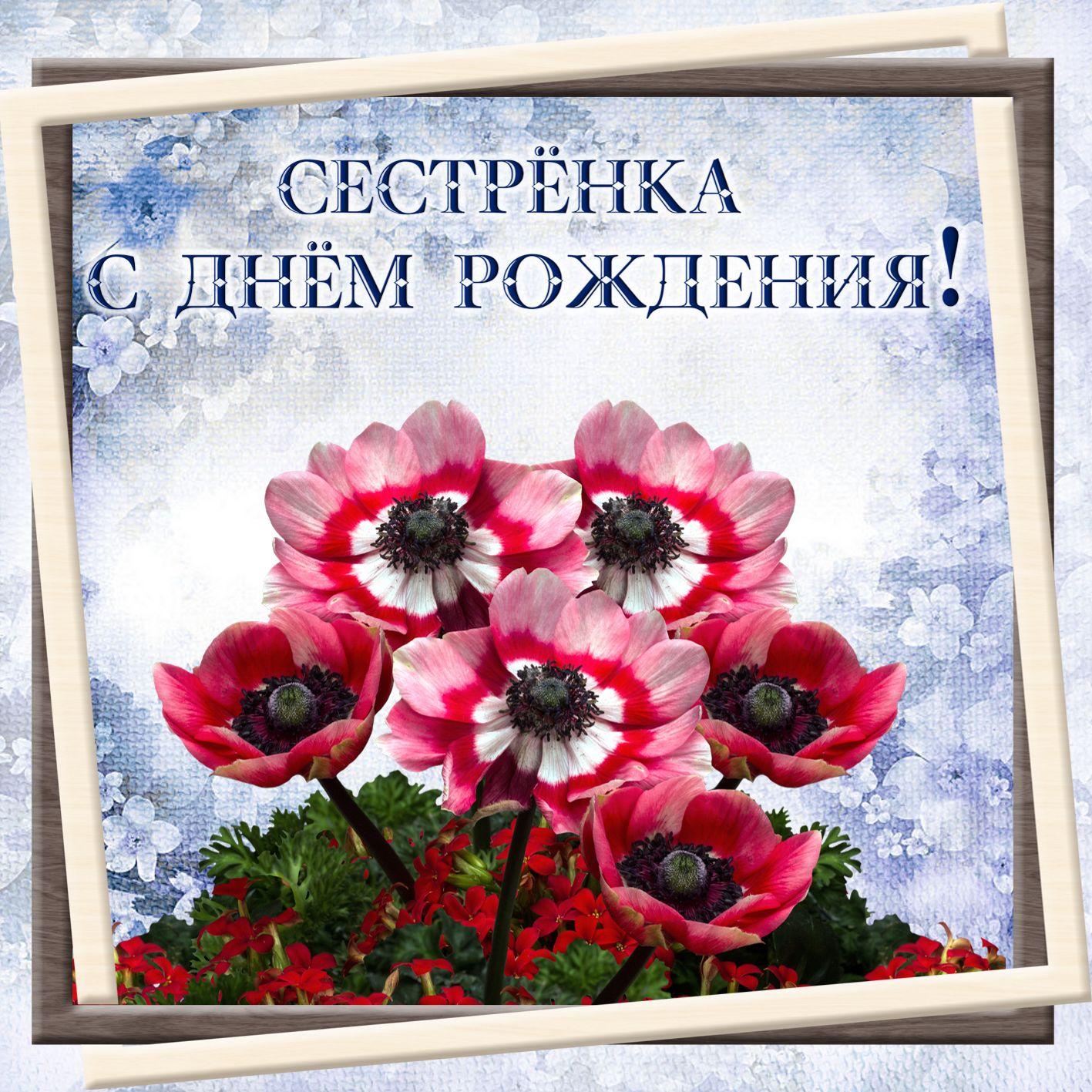 Моей сестре открытка цветы, месяц поздравления картинки