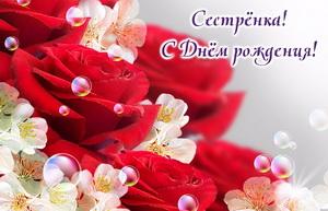 Красивые красные розы на День рождения сестре