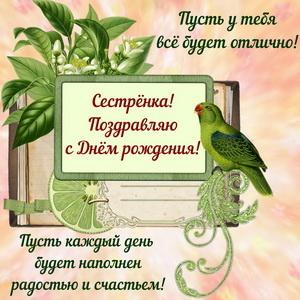 Красивая картинка с попугаем и пожеланием