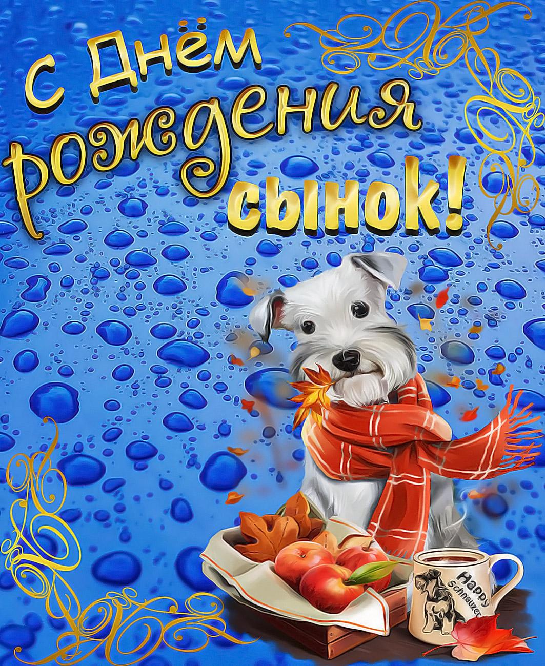 Открытка на День рождения сыну - милая собачка в оранжевом шарфике