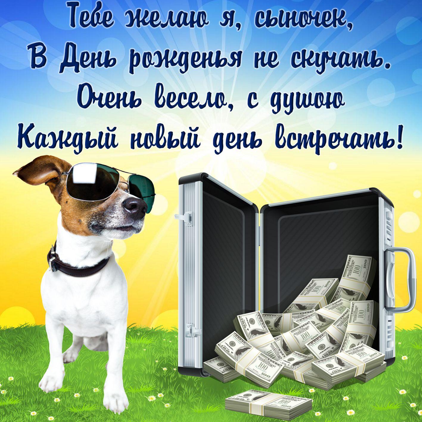 Открытка на День рождения сыну - чемодан с долларами и собачка в очках