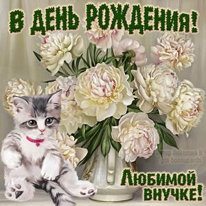 Котёнок и букет цветов для любимой внучки