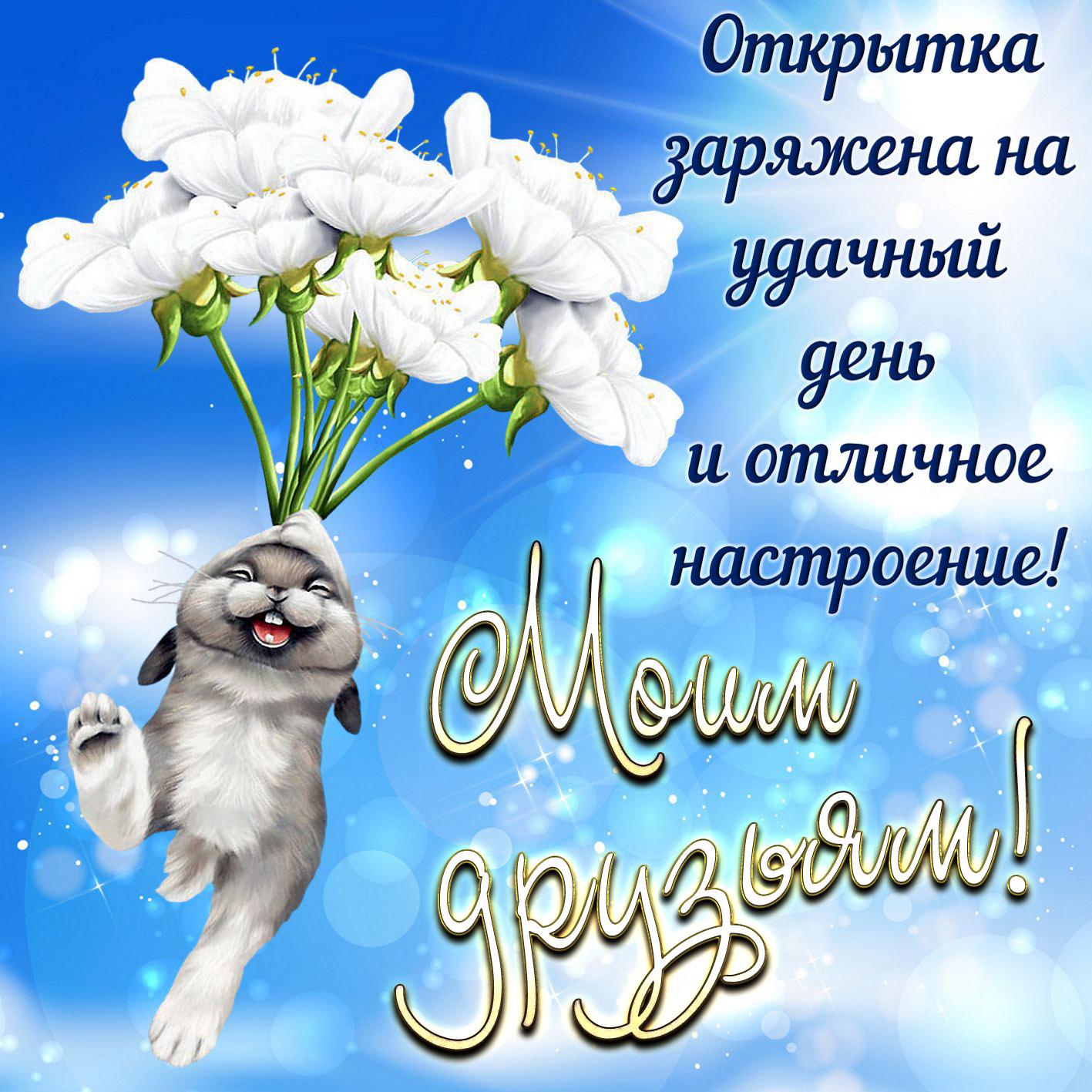 Андрей днюхой, одноклассникам открытка