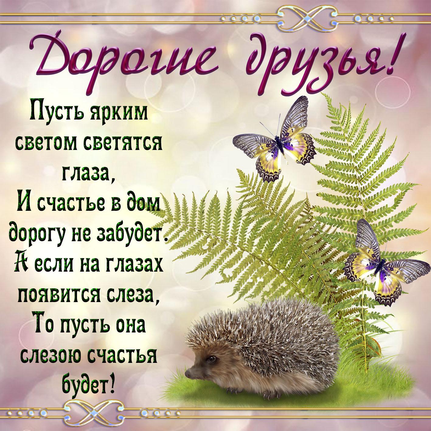Милая открытка дорогим друзьям с ёжиком