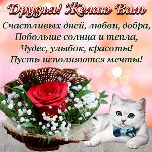 Красная роза и пожелание друзьям