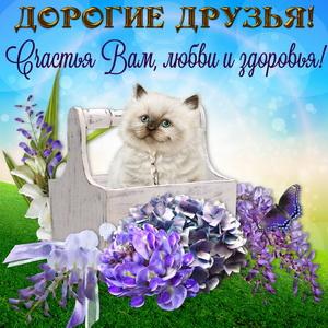 Картинка с котиком для дорогих друзей