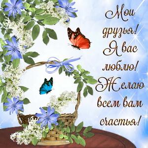 Картинка с бабочками и цветами для друзей