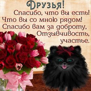 Доброе пожелание друзьям и букетик роз