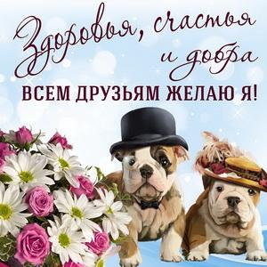 Милые собачки желают всем друзьям счастья и добра