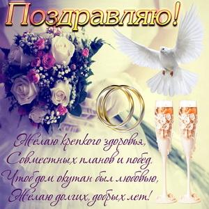 Белый голубь и букет цветов в руках