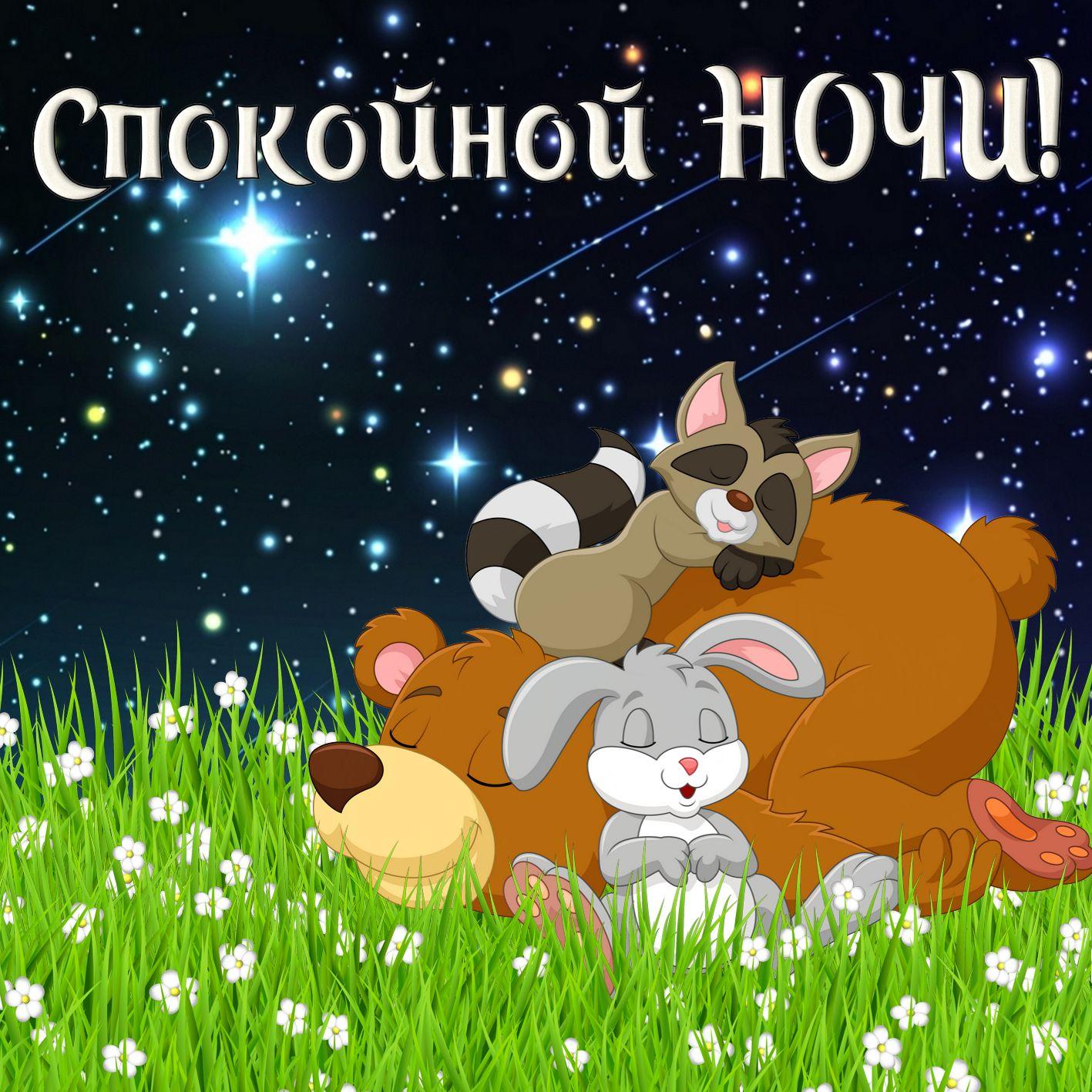 Смс картинки любимой спокойной ночи домашние животные целуются