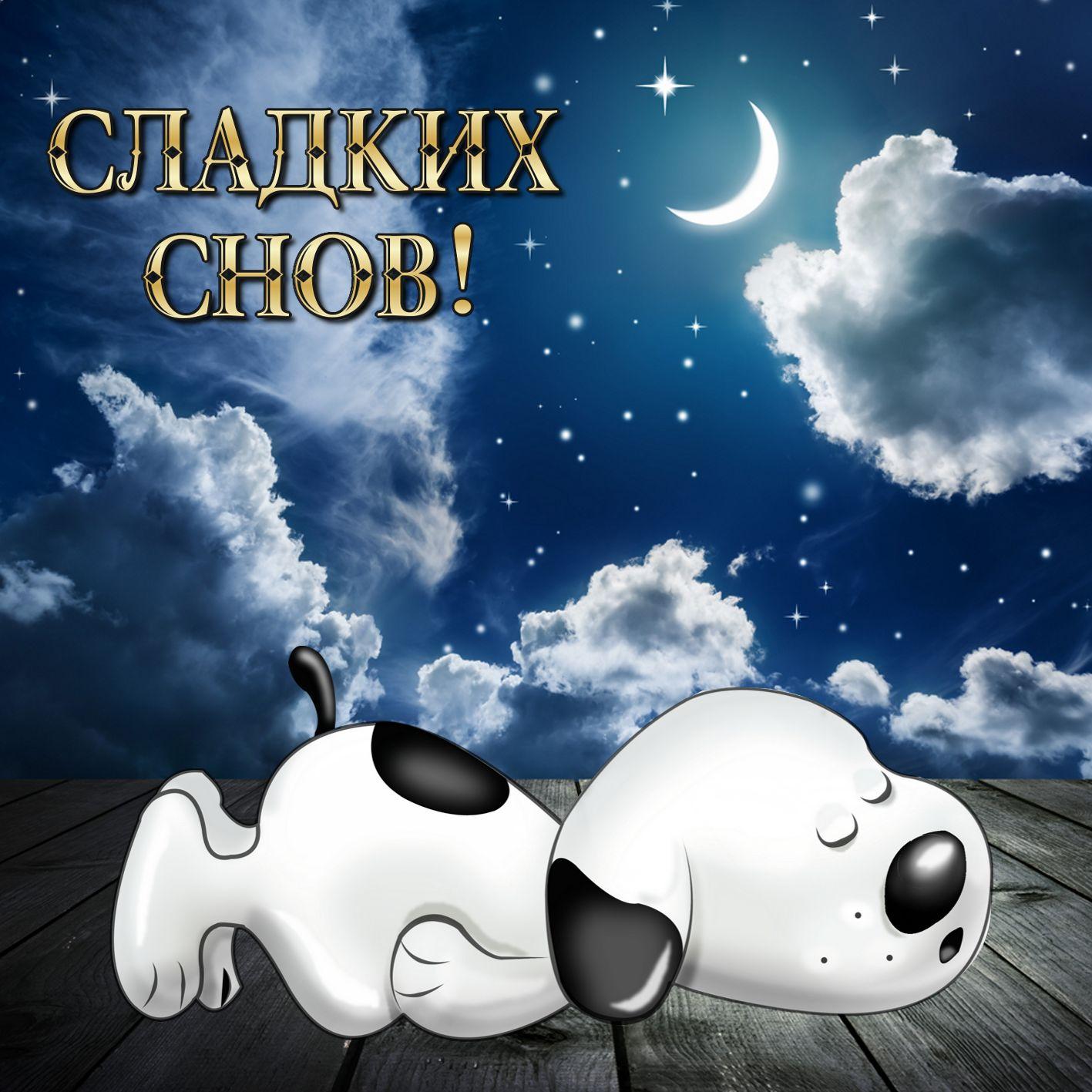 Открытка спокойной ночи - спящий пёсик в красивом оформлении