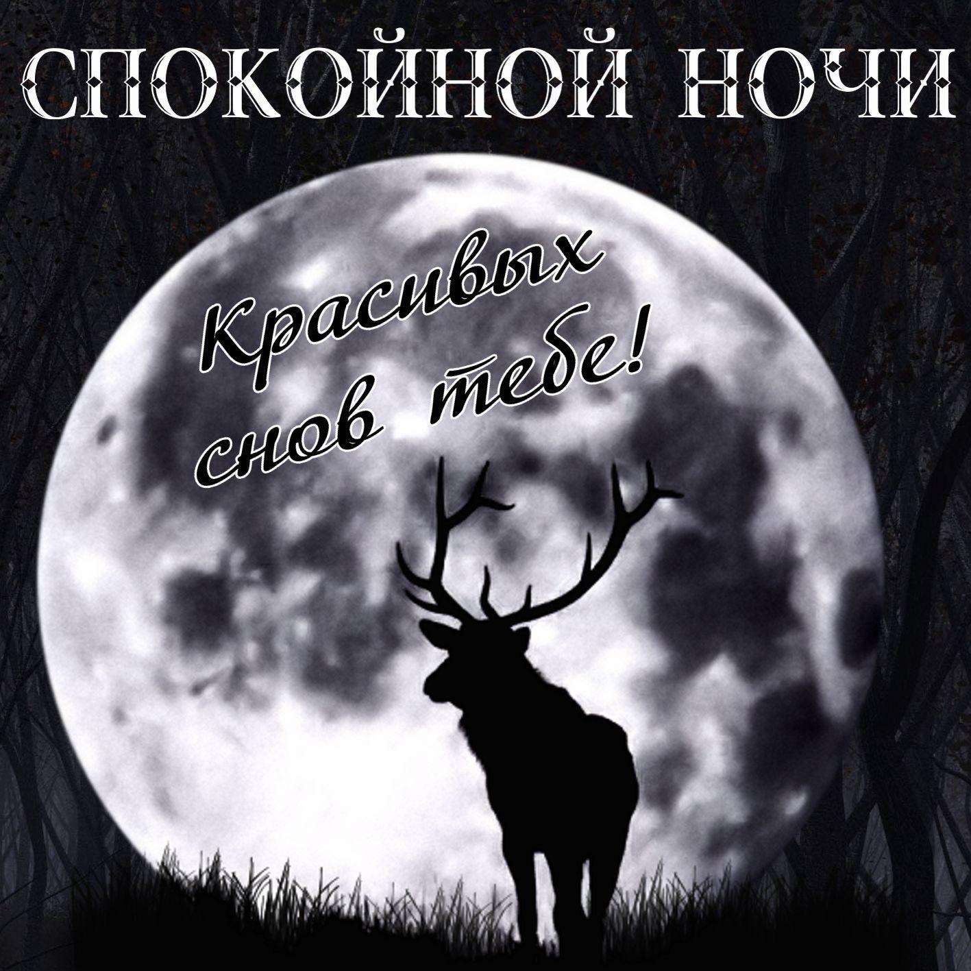 Открытка спокойной ночи с оленем на фоне луны