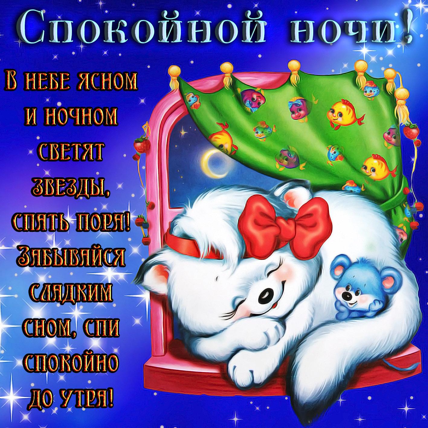 Котик с мышонком желают спокойной ночи