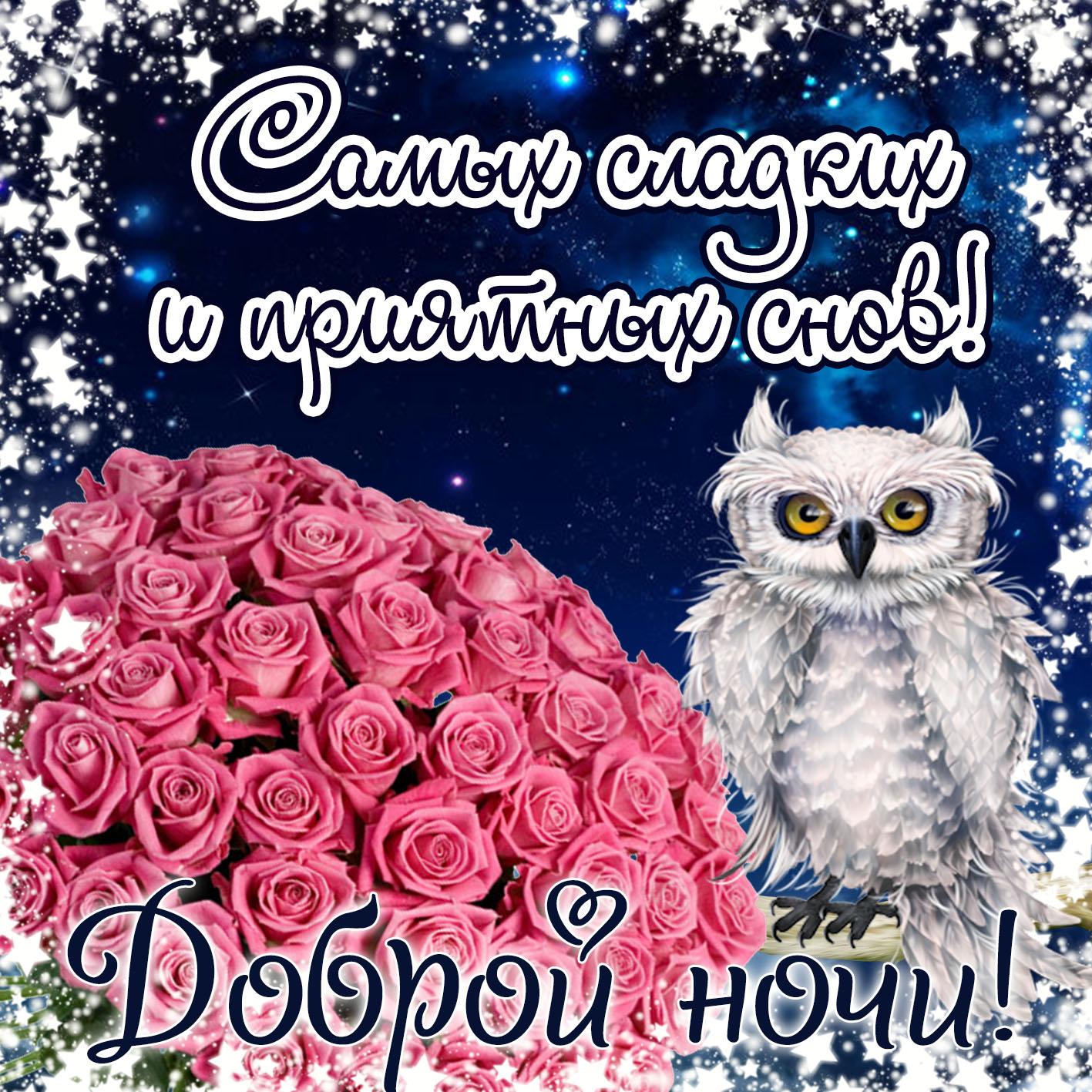 Открытка спокойной ночи - забавная сова желает приятных снов