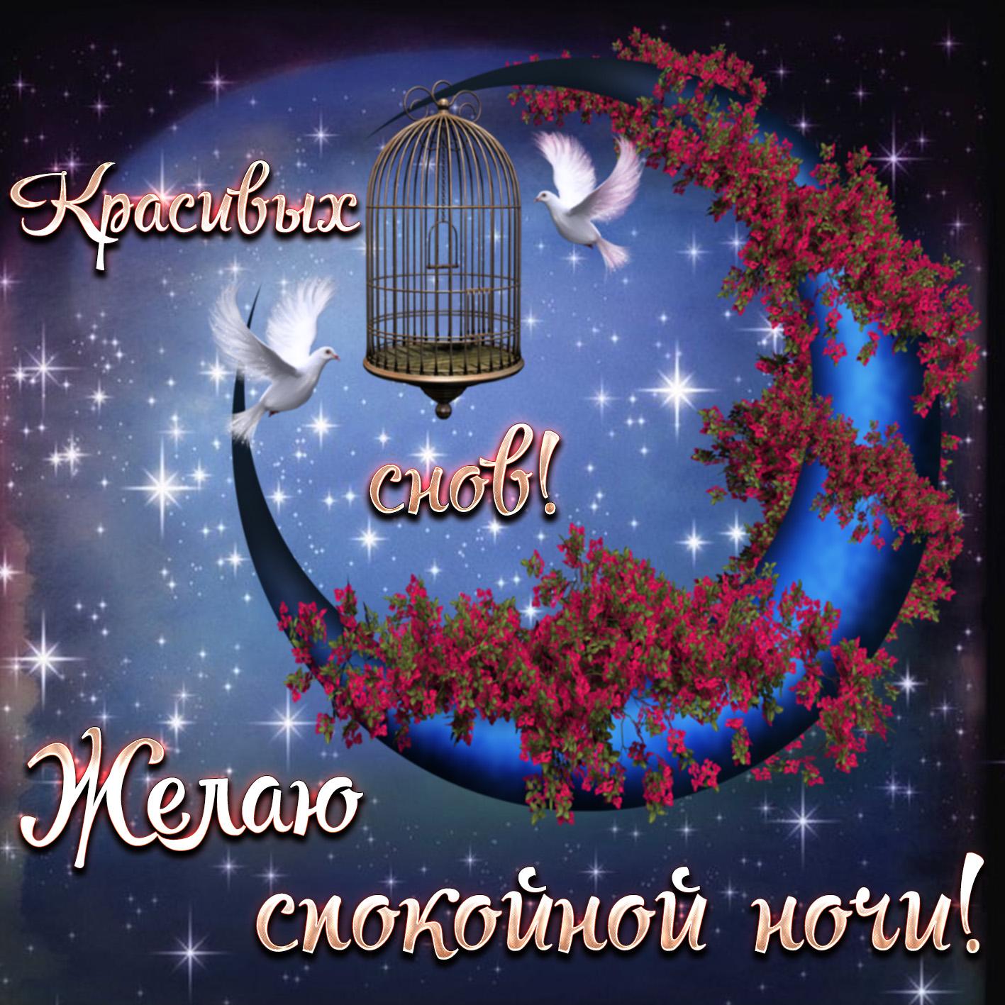 Открытка спокойной ночи с голубями в ночном небе