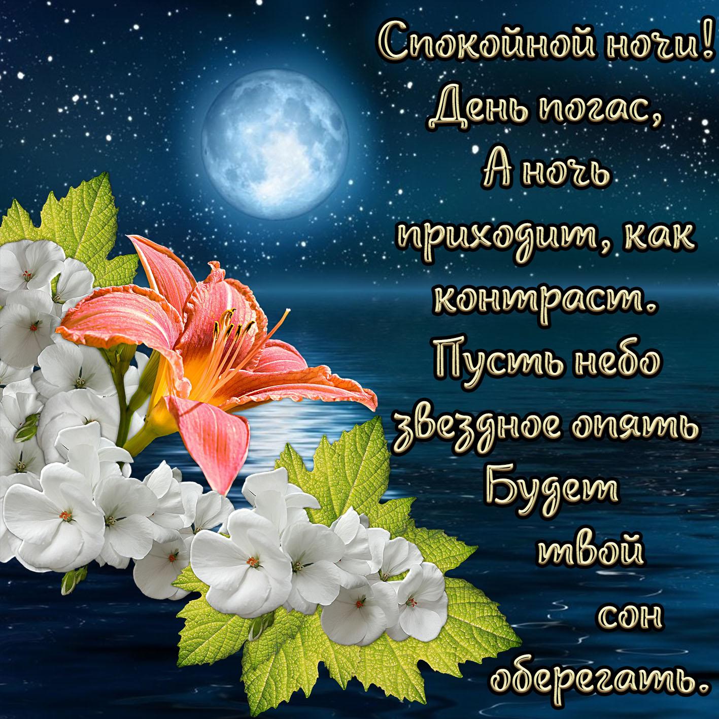 Открытка - красивое пожелание спокойной ночи в стихах