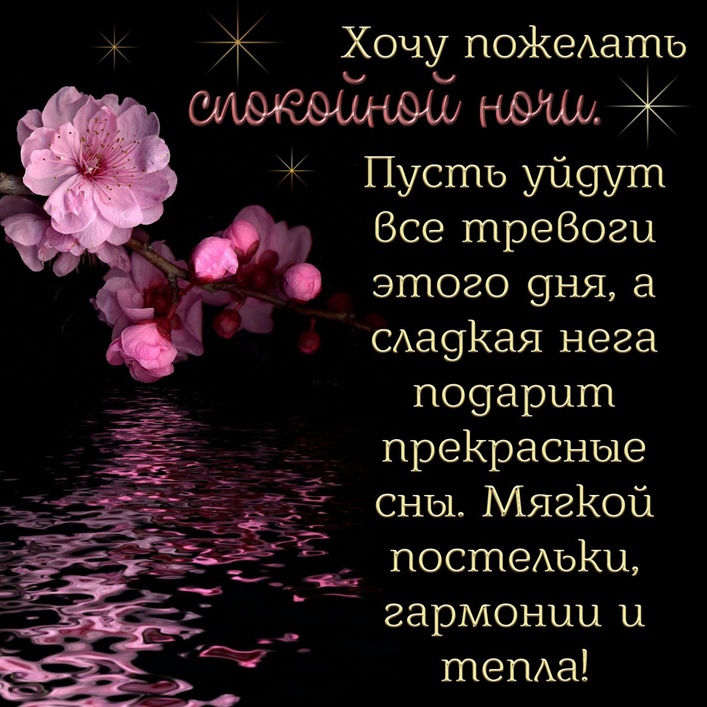 Картинка спокойной ночи с цветком над водой среди ночи