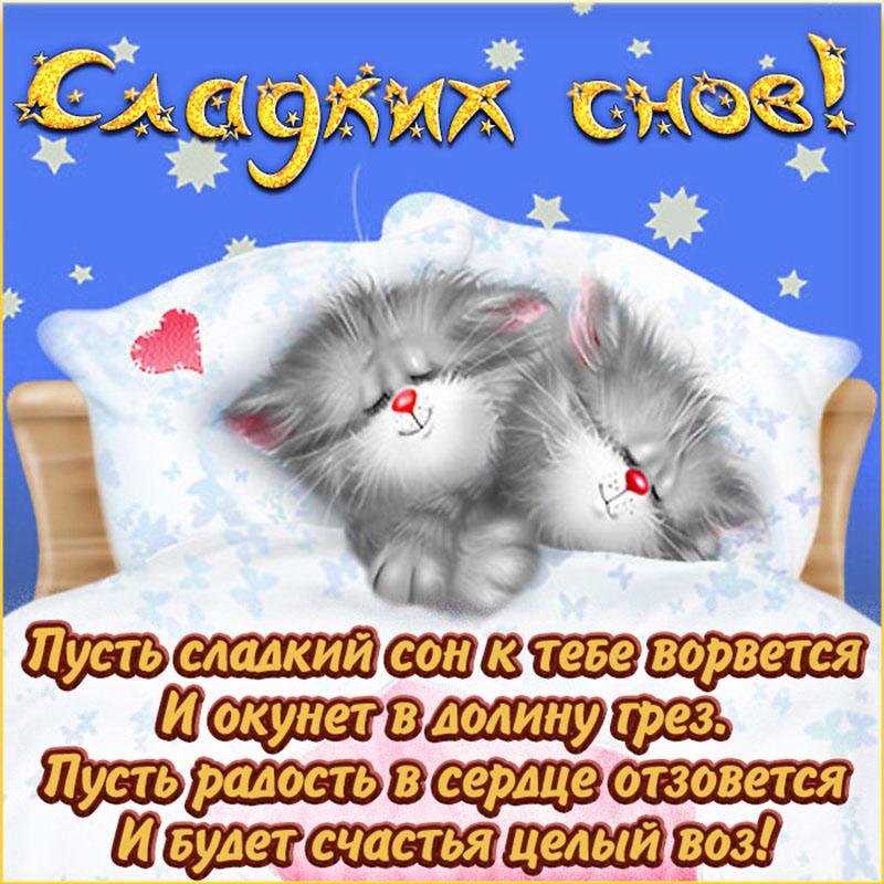 Открытка с котиками в кроватке желающими сладких снов