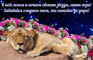 Открытка со спящим среди цветов львёнком