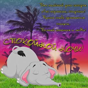 Слонёнок спящий среди пальм