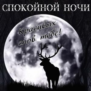 Открытка с оленем на фоне луны