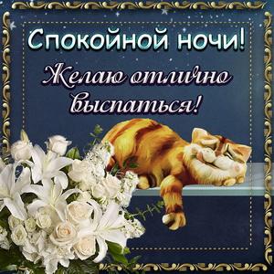 Открытка спокойной ночи со спящим котиком и цветами
