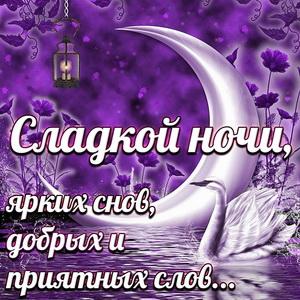 Картинка с пожеланием сладкой ночи под огромной луной