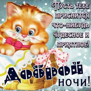 Картинка с милым котиком желающим доброй ночи