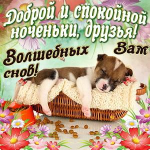 Открытка доброй и спокойной ноченьки, друзья