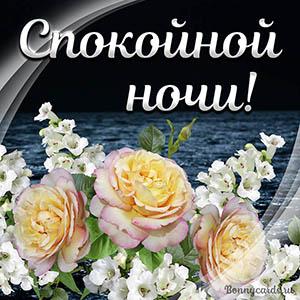 Пожелание спокойной ночи на картинке с нежными розами