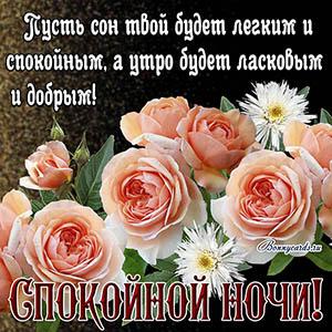 Красивое пожелание спокойной ночи на фоне нежных роз