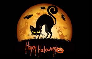 Черная кошка, летучие мыши и привидения