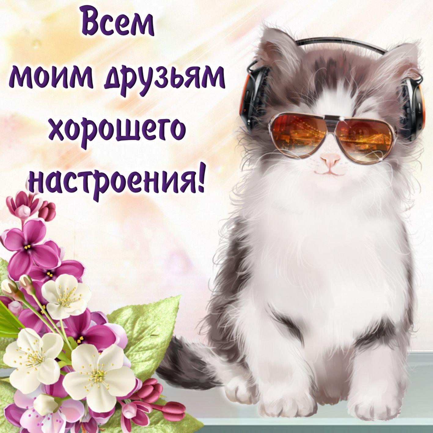 Спасибо, открытки с хорошим настроением для друзей