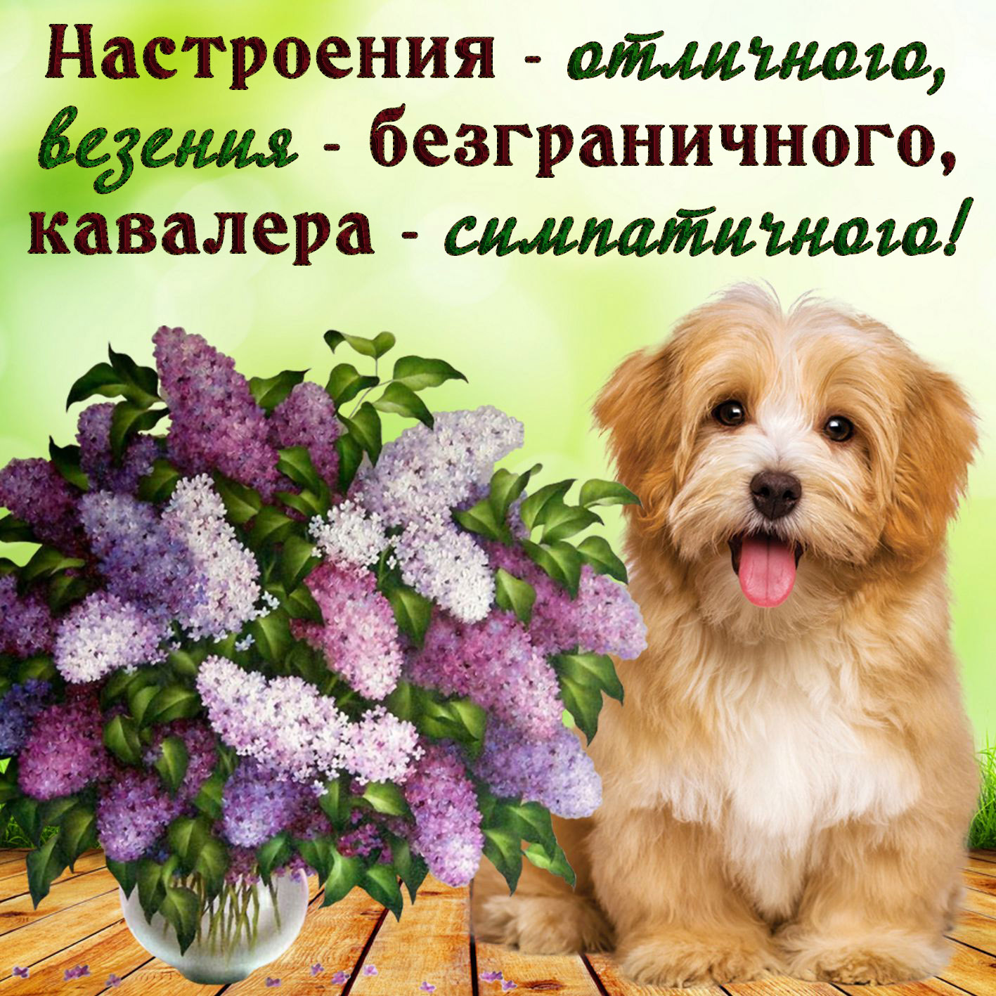 Здесь лучшие открытки, картинки про казахов