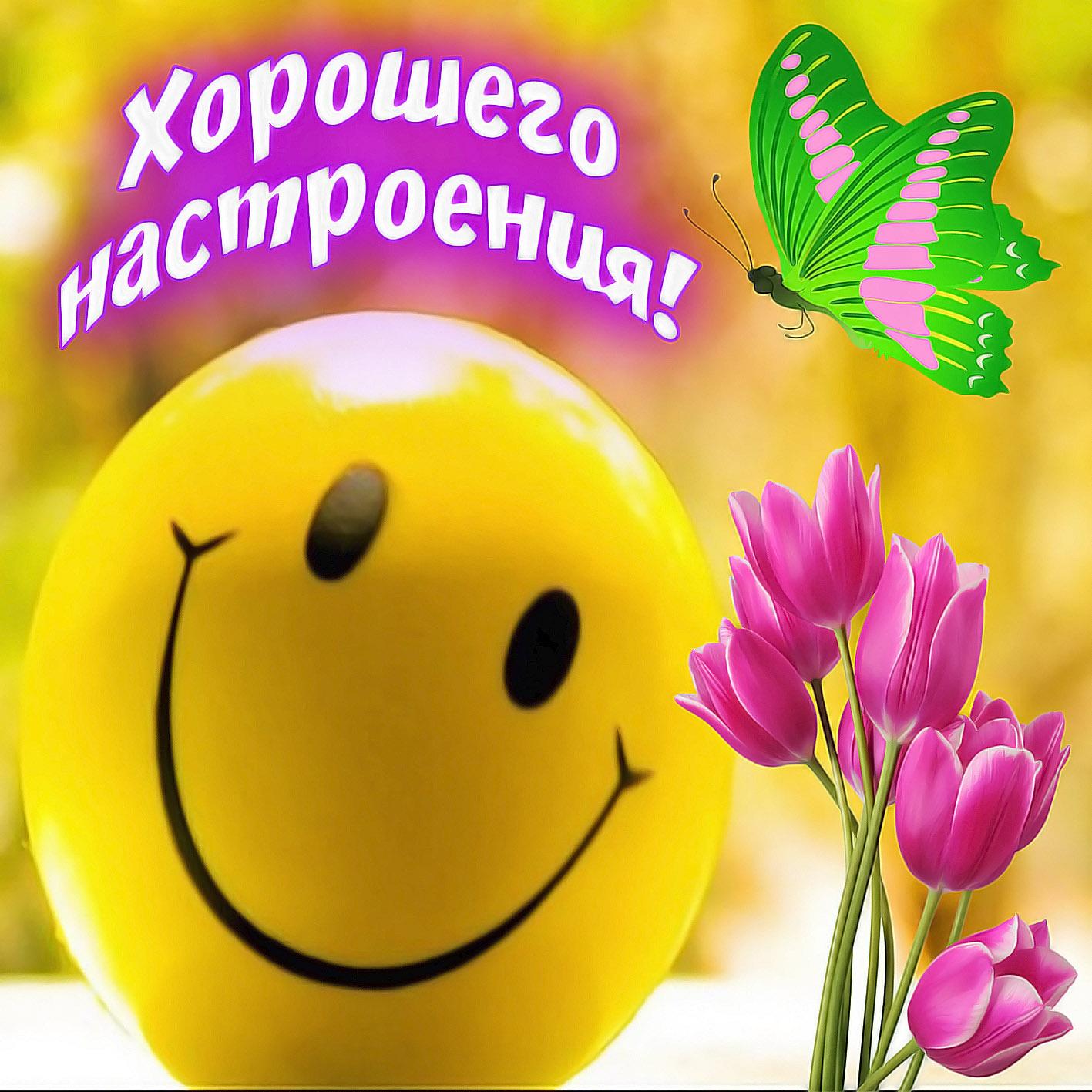 Пожелания хорошего настроения в открытках, надписью