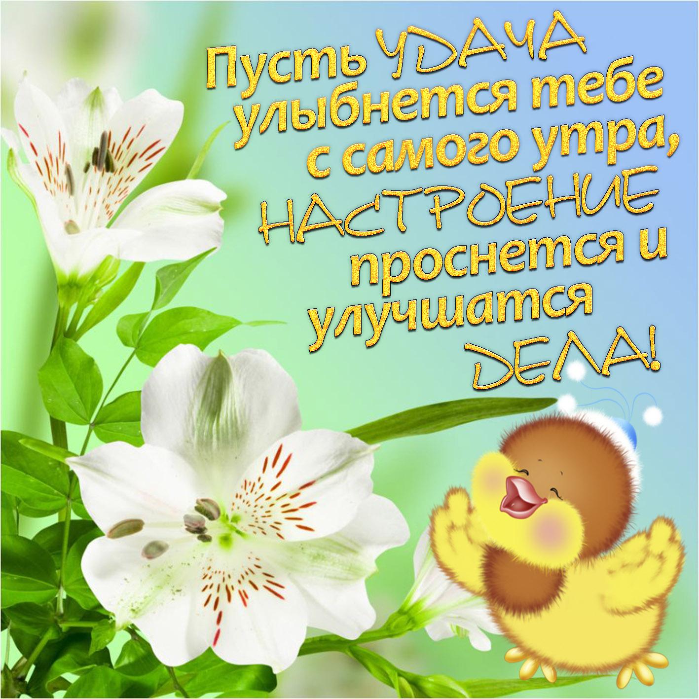 Открытки хорошего дня и удачи во всем
