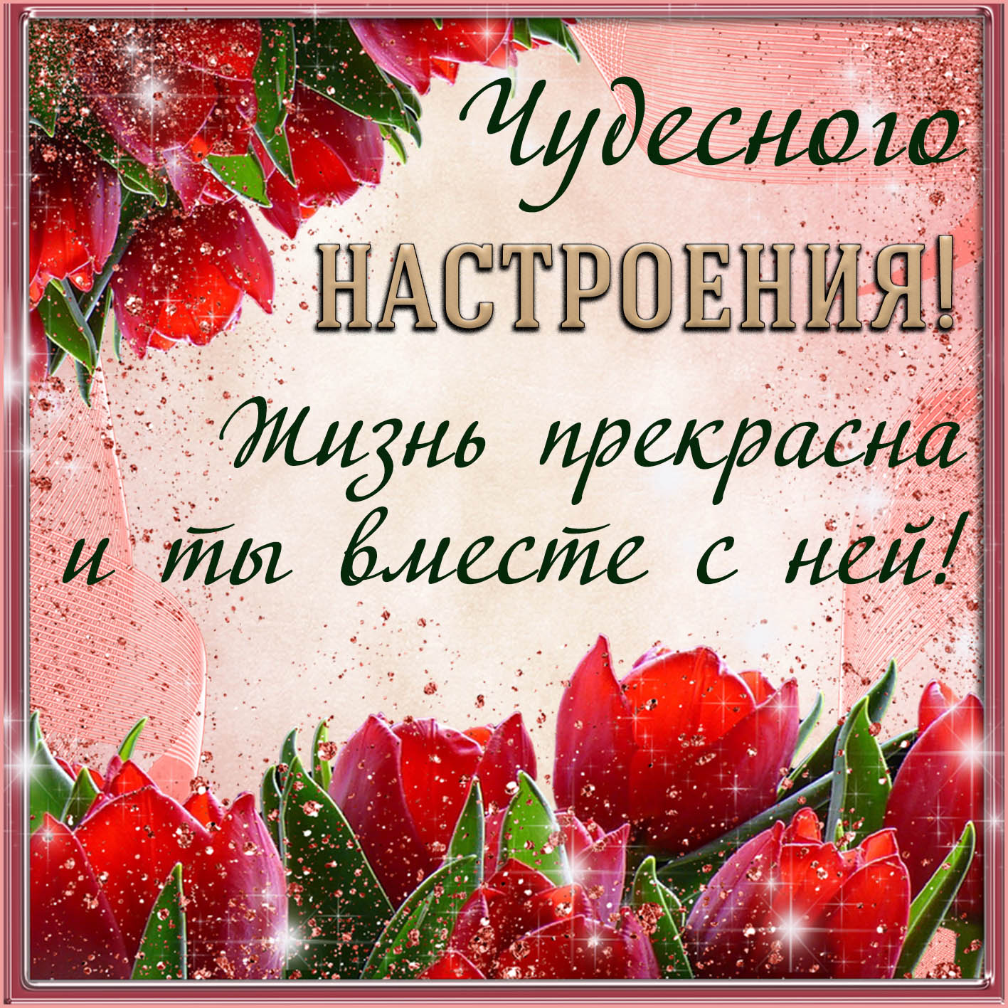 Открытка - пожелание чудесного настроения на фоне тюльпанов