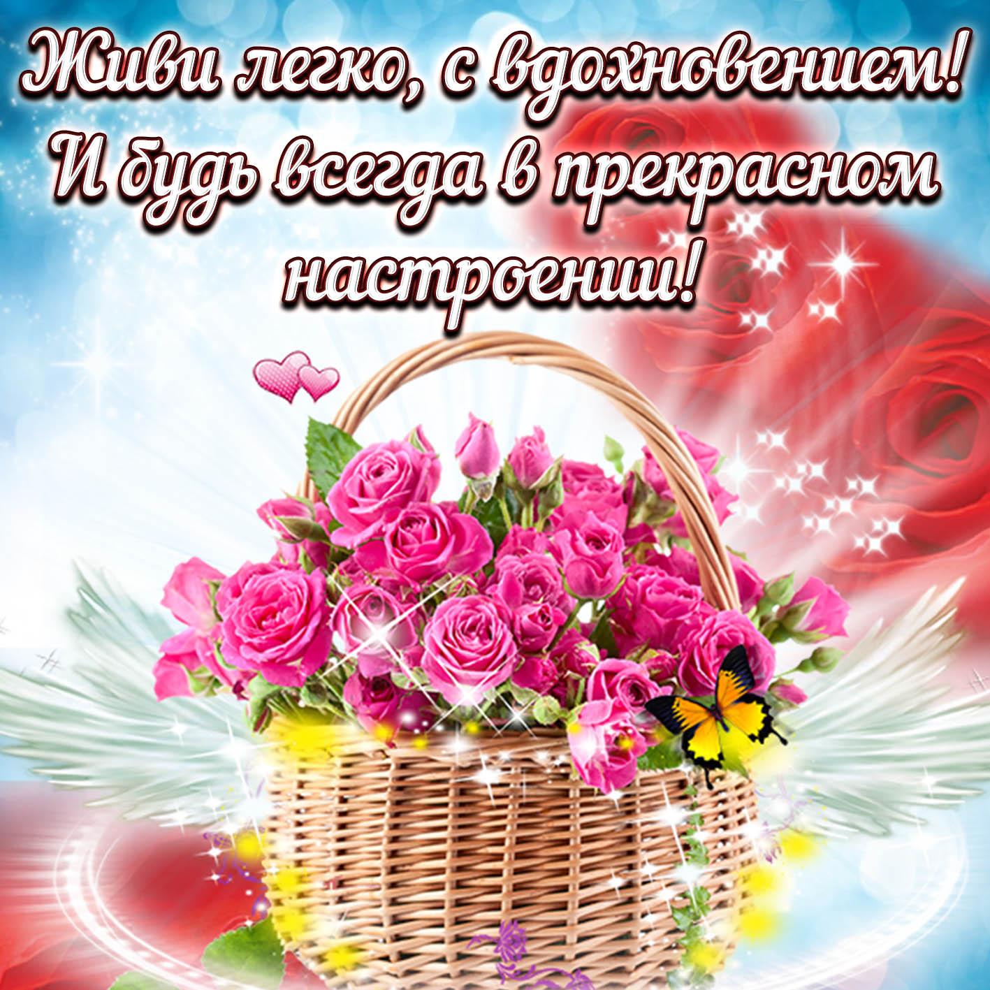 Открытка - корзина ярких роз для прекрасного настроения