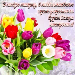 Яркий букет разноцветных тюльпанов