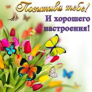 Открытка с бабочками на тюльпанах