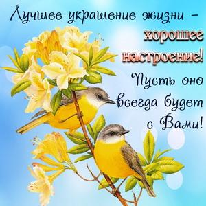 Открытка с красивыми птичками на веточке