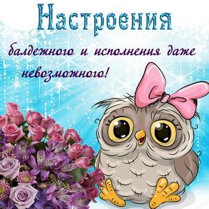 Открытка с совой, цветами и пожеланием