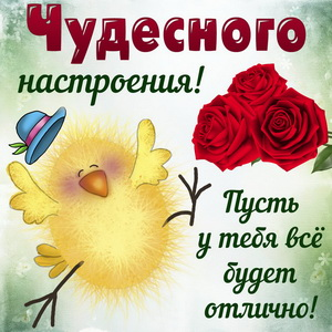 Открытка для настроения с цыплёнком и розами