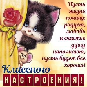 Котёнок с мышкой желают классного настроения